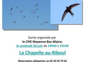 Affiche sortie apéro Martinet